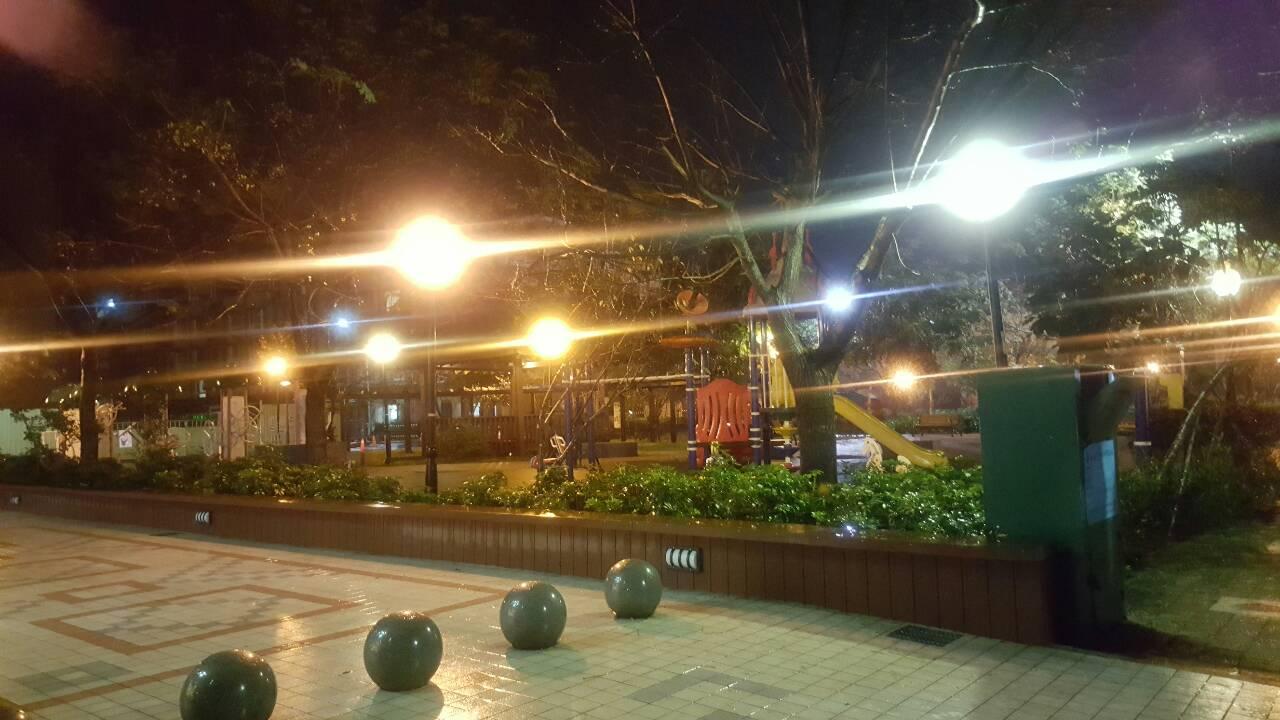 樹屋親子餐廳_19