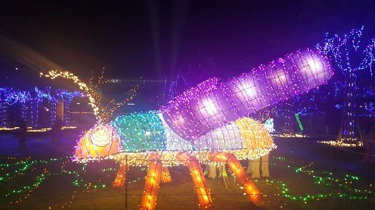 台灣燈會_25