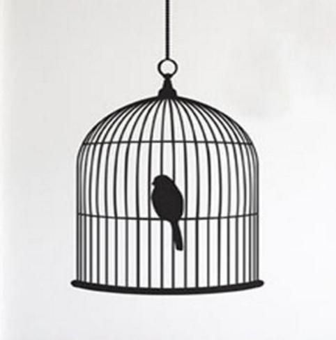 [太極] 4/25 空方猶如籠中之鳥
