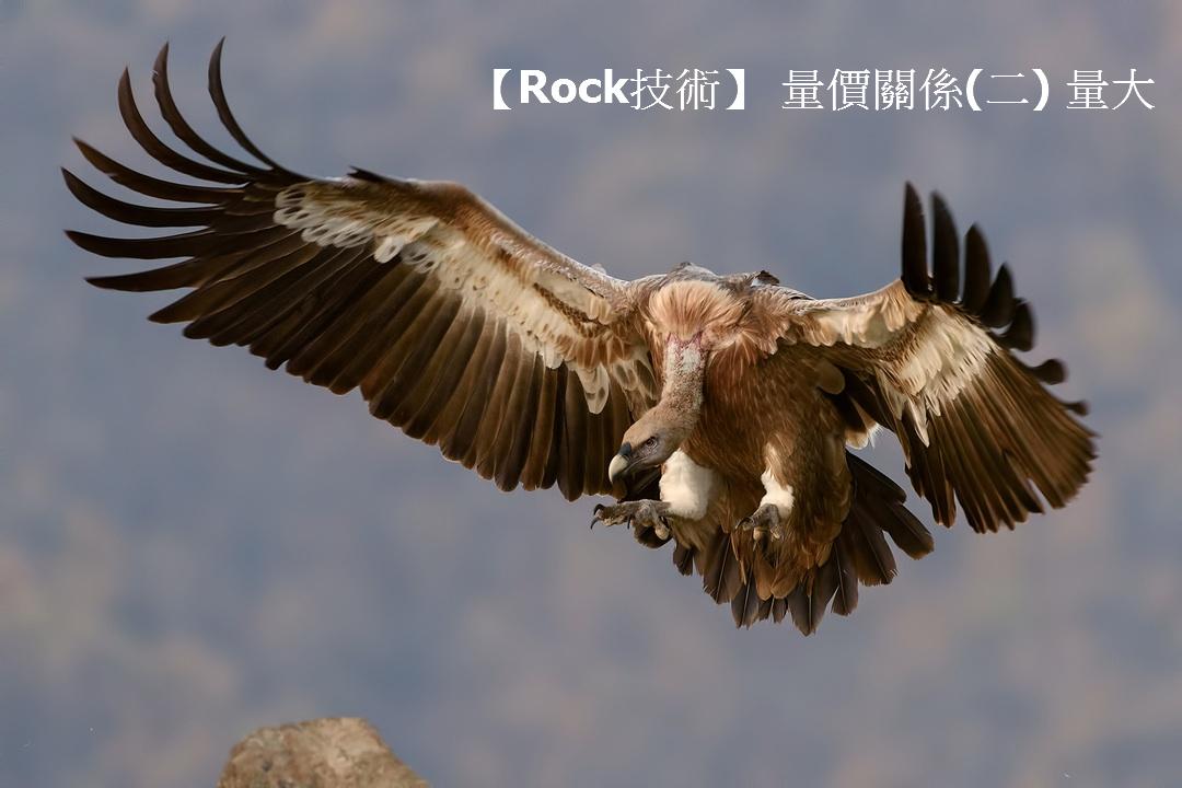 【Rock技術】 量價關係(二) 量大