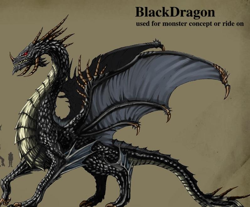 飛龍操作技巧(三):征服黑飛龍