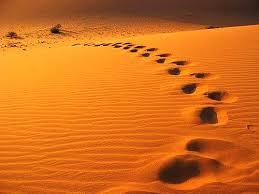 修正就如同小石子,會讓我們走得更堅定