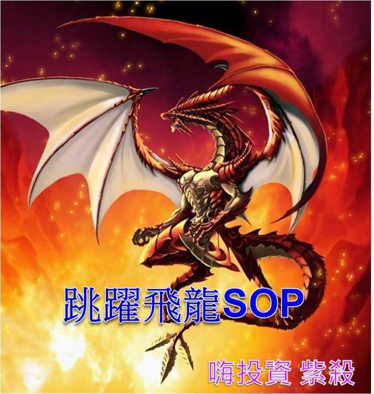 【跳躍飛龍】SOP流程圖,8月大跌1400點也能賺