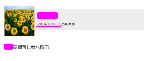 2015年五大水龍已經有兩檔竄出水面(水龍2號)_03